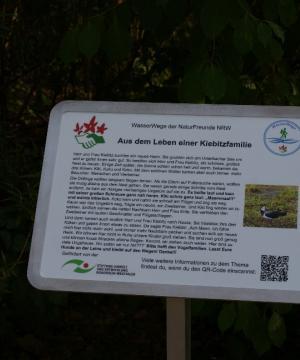 """Informationstafel 6: """"Aus dem Leben einer Kiebitz-Familie"""": Scheue und weniger scheue Vogelarten"""